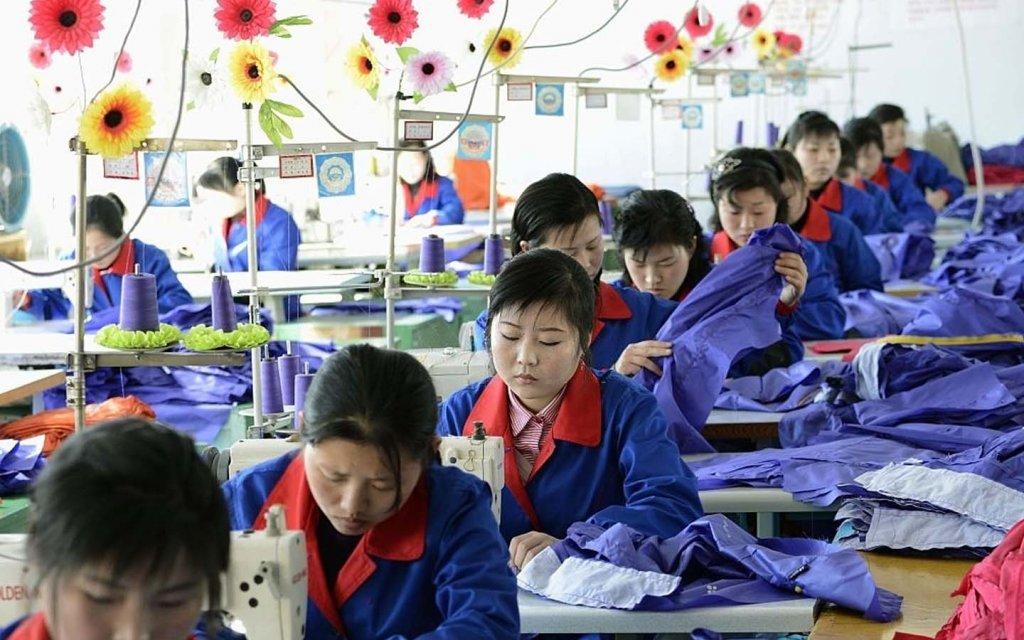 Bidang Pekerjaan Di Korea